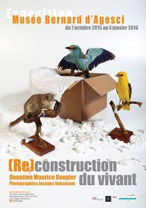 Affiche de l'exposition (Re)construction du vivant, donation Maurice Rougier, Musée Bernard d'Agesci