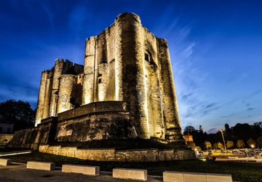 Le Donjon de Niort vu de Nuit