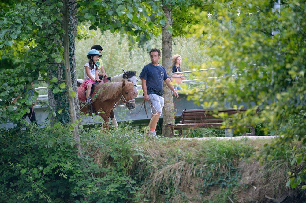 Niort plage balade poney - Piscine pre leroy ...